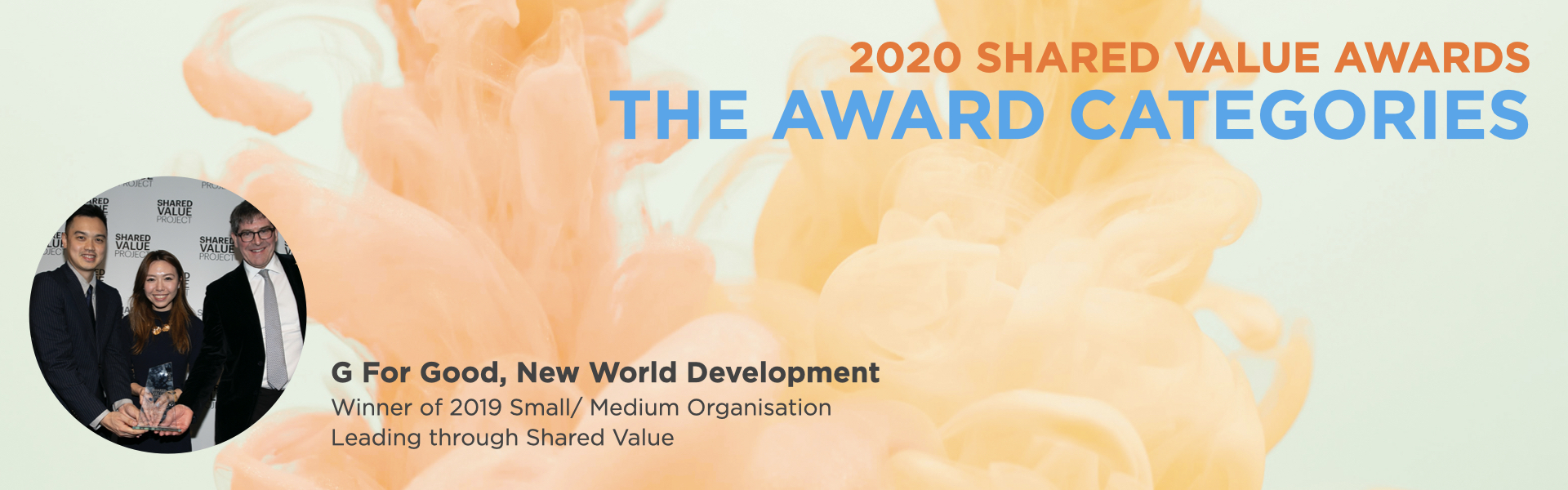 Shared Value Awards categories